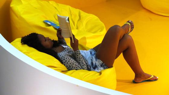 Soraria Magalhães - A Biblioteca Parque do Estado do Rio de Janeiro - imagem5