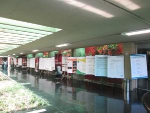 Trabalhos apresentados no II SINTAE / Foto: Luciana Rodrigues