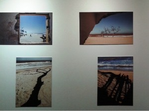 Lugares secos e de praia. Foto: Luciana Rodrigues/Revista Biblioo