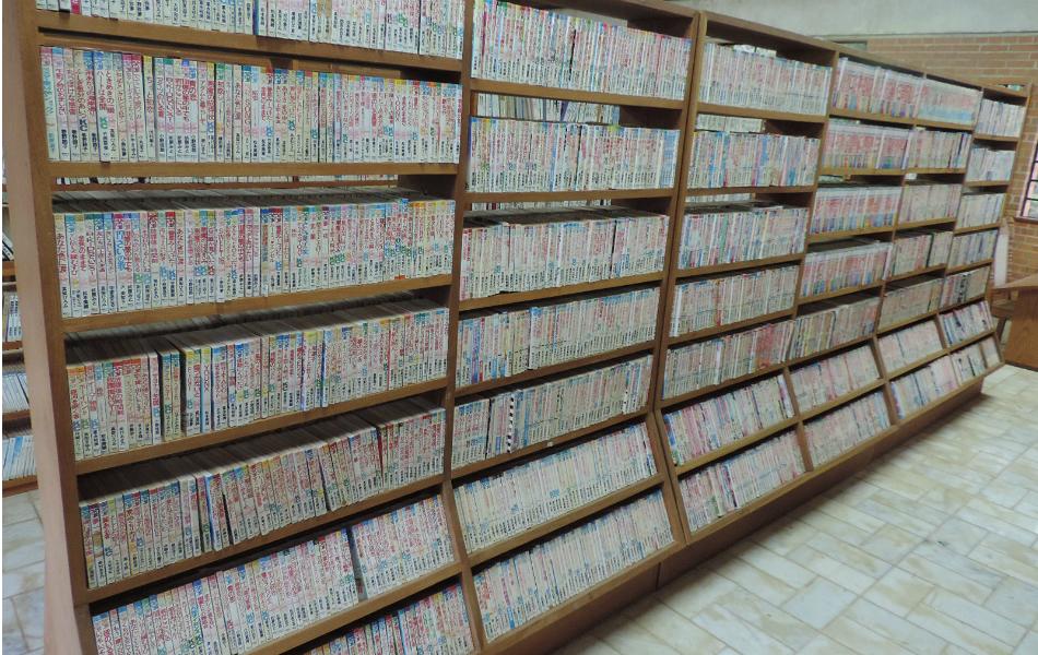 Dos 74 mil livros, cerca de 70% são mangás, afirma administrador. Foto: Caio Gomes Silveira / G1