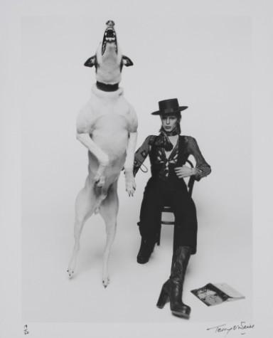 Copyright - David Bowie - Diamond Dogs (1974) Terry O'Neill - MIS / Divulgação - The David Bowie Archive 2012 © V&A Images